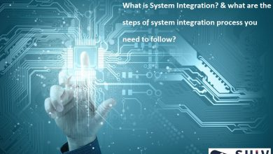 Software & System Integration Services