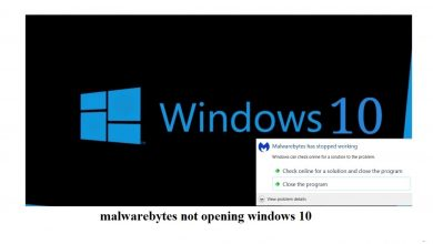 malwarebytes not opening windows 10