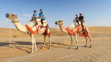 thing-to0do-in-dubai-with-kids
