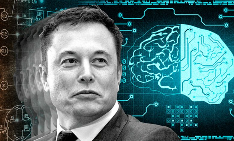 What is Elon Musk's IQ