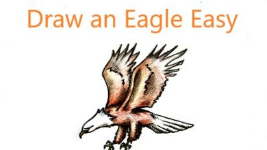 draw an eagle easy