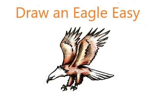 draw an eagle easy