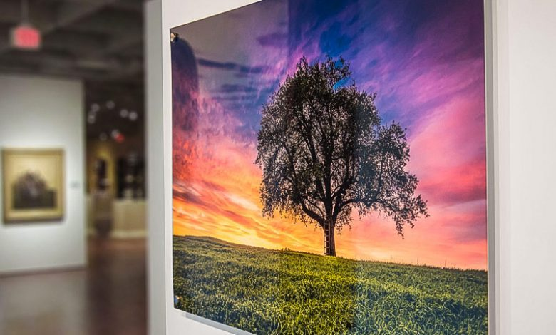 Why you should consider Acrylic prints