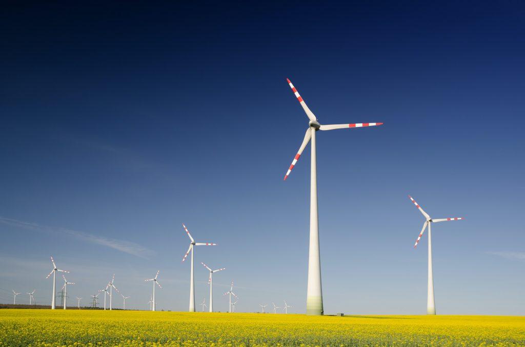 Peter - Green Energy (2)