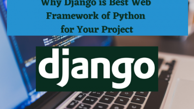 Why Django is Best Web Framework of Python for Your Project